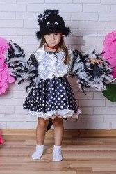Карнавальные костюмы -сорока, снигирь, синичка, воробей , прокат троещина